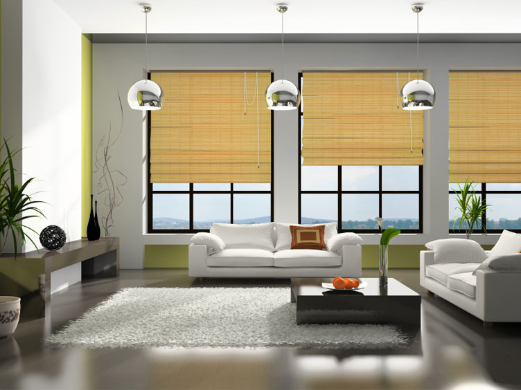Curtains Ideas curtains & blinds : Blinds, Curtains, or both?